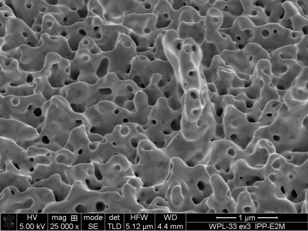 Electron-microscopic image of a tungsten surface originally polished smooth after testing in GLADIS. In the tests the surface temperature ranged up to 2000 °C. The scale bar at the bottom right is one micrometre.